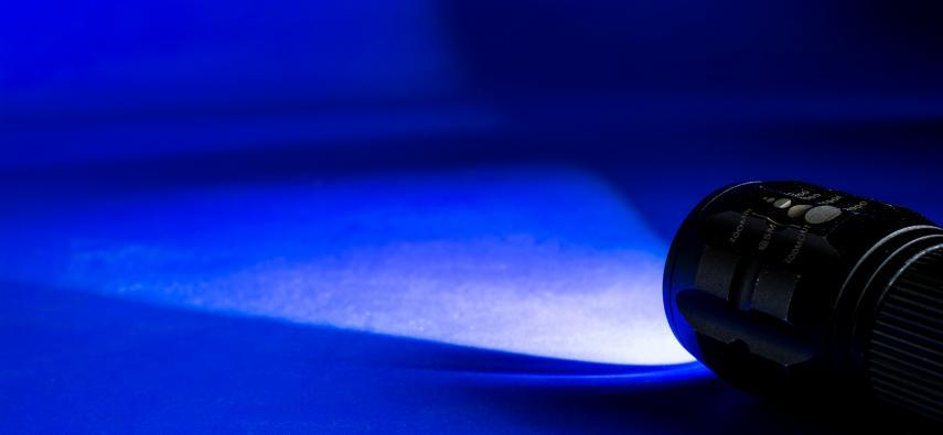 Optogenetyka – jak przez światło regulować aktywność neuronów?